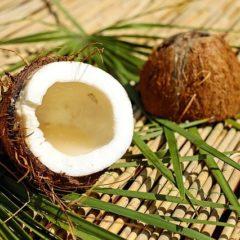 Cococut
