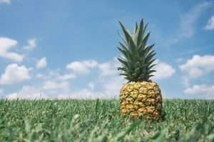 How to Use Pineapples for Better Health