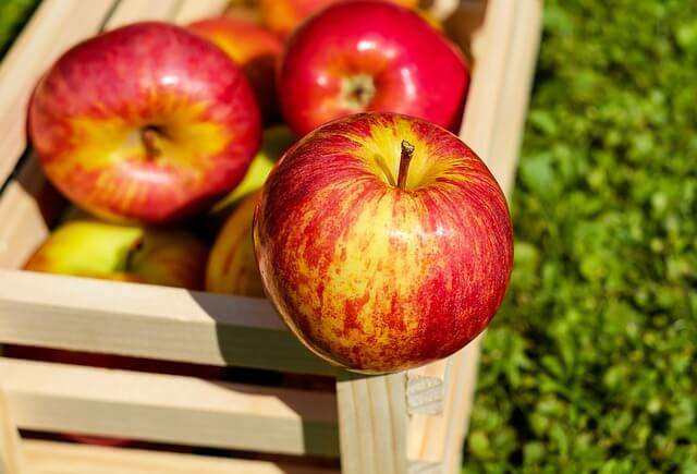 12 of the Best Health Benefits of Apples