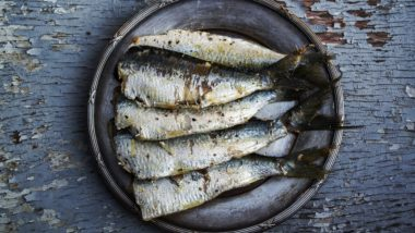 All about Omega-3 and Omega-6 Fatty Acids