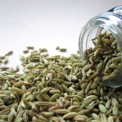 13+ Benefits of Fennel Seeds